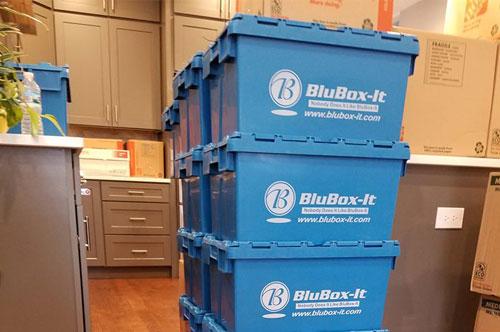 blubox vs cardboard
